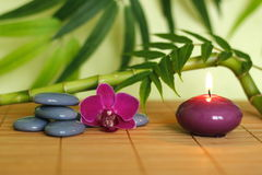 Stones arranged in Zen lifestyle with an orchid, a lighted candle, a bamboo branch and foliage. Gray stones arranged in Zen lifestyle with an orchid, a lighted stock images