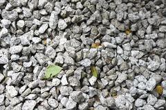 Many stones and leaves texture stock images