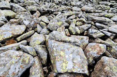 Stones background. A bunch of big rocks covered with moss Royalty Free Stock Photo