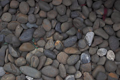 Stones background. A close up view of smooth polished multicolored stones washed ashore on the beach Royalty Free Stock Photos