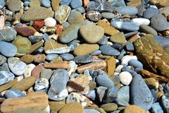 Stones background in gray, white, brown, orange and blue hues. Stones of various shapes and colors, background, Tyrrhenian sea, in Livorno, Salivoli Tuscany stock photography