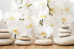 Stones on background orchid royalty free stock photos
