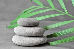 Stones balance and plant. Zen and spa concept. Royalty Free Stock Image