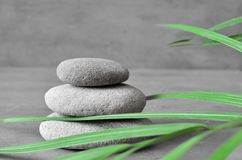 Stones balance and plant. Zen and spa concept. Stock Photos