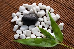 Stones and bamboo leaves Stock Photos