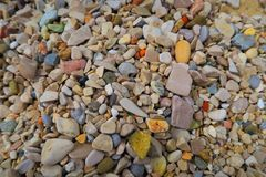 Stones. On a beach Royalty Free Stock Photography