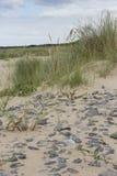Stones on the beach, Background stock photo