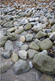 Stones on the beach at Ballinskelling beach, Ireland Stock Photography