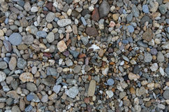 The stones on the beach. The stones of different colors. Red round stones, black checkered stones, blue roller stones and yellow with white Stock Photo