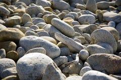 Stones at the beach in harmony Stock Image