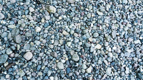 Stones at the beach. Of Lohme Stock Photography