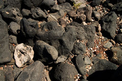 Stones at the beach Royalty Free Stock Photos