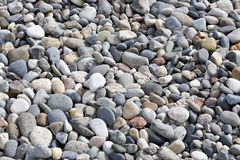 Stones and beach pebbles Stock Images