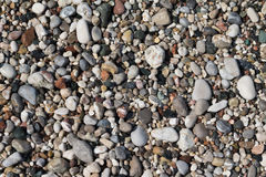 Stones on the beach Stock Photography