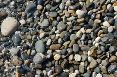 Stones on the beach in Sochi stock image