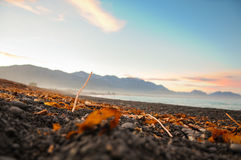 Stones on the Beach in the Sunset, New-Zealand. New Zealand is a country of stunning and diverse natural beauty: jagged mountains, rolling pasture land, steep Stock Image