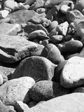 The stones in black and white. Sun stones on the seaboard  in black and white Stock Photography