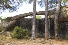 Stones in Ciudad Encantada forest in Spain. Stones in Ciudad Encantada forest in Spain, Europe Royalty Free Stock Images