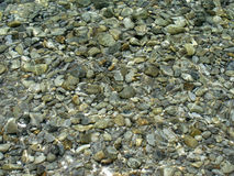 Stones in clear water Royalty Free Stock Photos