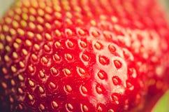 Stones close up fresh ripe strawberry/stones close up fresh ripe juicy strawberry stock images