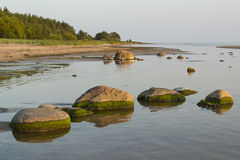 Stones at coastline. At sunset Stock Photos