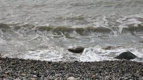 Stones coastline surf stock video footage