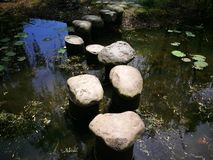 Stones constructing a path in the forest Stock Photo