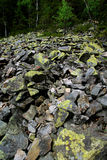 Stones covered with moss and lichen. Grey stone covered with moss and lichen in mountains stock photos