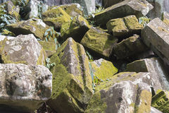 Stones covered with moss. Stones covered with moss on a summer day Royalty Free Stock Photos