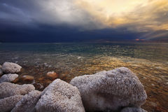 The stones covered by salty adjournment royalty free stock photo