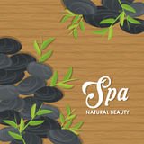 Stones and decoration. Spa center design. Vector graphic Stock Photos