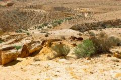 Stones in Desert Stock Photo