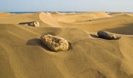 Stones in the desert Stock Image