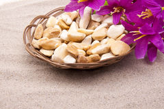 Stones with flowers on beach Stock Photography