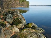 Stones, forest and lake. Stony shore of the forest lake Stock Photography