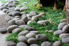 Stones on Grass. An abstract shot of stones on grass with shallow depth-of-field stock photos