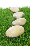 Stones on the grass Royalty Free Stock Images