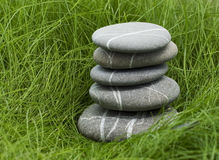 Stones in grass. Stones in dark green grass Royalty Free Stock Photo