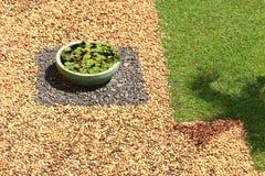 Stones and grass garden Stock Photo