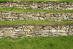 Stones and grass. Green grass that grows on stone terraces Stock Photography