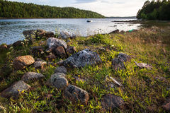 Stones and grass on the shore of the White Sea. The boats in the background royalty free stock image