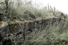 Stones and Grass. A view of stone wall and grass near the harbor Royalty Free Stock Photo