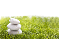Stones and grass  on white background. Royalty Free Stock Photo