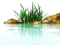 Stones and grasses. Small island from stones and grasses in an environment of water Royalty Free Stock Photography