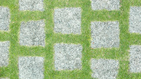 Stones and green grasses footpath closeup Royalty Free Stock Images