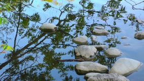 Stones on Green Lake stock footage