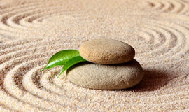Stones and green leaf on the sand with circles Stock Image