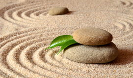 Stones and green leaf on the sand with circles Royalty Free Stock Photos