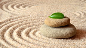 Stones and green leaf on the sand with circles Stock Images