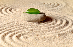 Stones and green leaf on the sand with circles Royalty Free Stock Photo